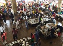 Ferry fish market, Tanzania